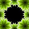 Фото 300 DPI: абстрактный каркас аппликация цветок