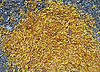 Abstrakcja, żółty, płatki na asfalcie, środowiska | Stock Foto