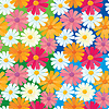 Vector clipart: seamless texture of daisy flowers