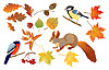 Vector clipart: Set of autumn forest leaves and little birds and