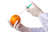 오렌지와 주사기와 과학 실험 | Stock Foto