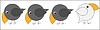 Векторный клипарт: белая ворона