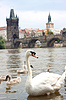 Photo 300 DPI: Prague. Charles Bridge in Prague Czech Republic