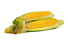 Corns with husk | Stock Foto
