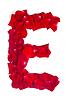 Foto 300 DPI: Letter E von roten Blütenblättern stieg