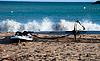 Deska windsurfingowa Na Plaży | Stock Foto