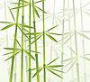 Векторный клипарт: бамбуковый лес