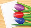Векторный клипарт: Белые тюльпаны