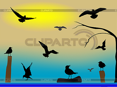 Birds paradise | Stock Vector Graphics |ID 3002579