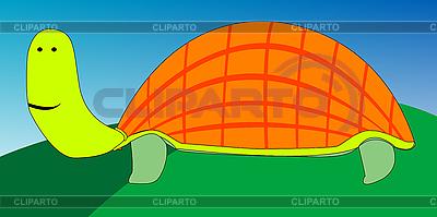 Zeichnung einer Schildkröte | Stock Vektorgrafik |ID 3005676