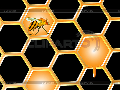 Bee and honey | Stock Vector Graphics |ID 3029161