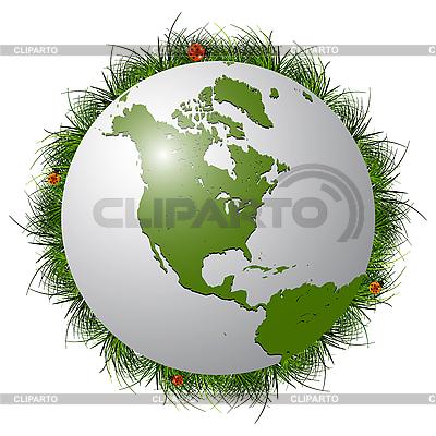 Glob, trawy i biedronki | Klipart wektorowy |ID 3029187