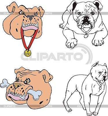 Bulldoge Cartoons | Stock Vektorgrafik |ID 3000722