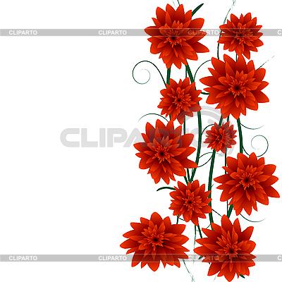Rote florale Komposition | Illustration mit hoher Auflösung |ID 3002436