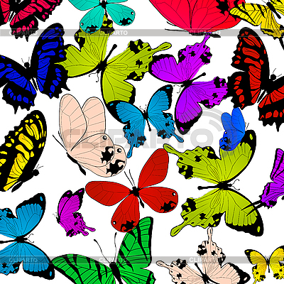 蝴蝶 | 高分辨率插图 |ID 3011133