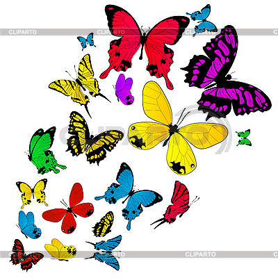 Colored butterflies background | Stock Vector Graphics |ID 3011134