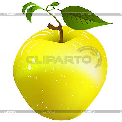 Fresh apple | Stock Vector Graphics |ID 3016625