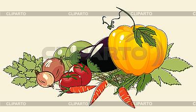 Pęczek warzyw | Klipart wektorowy |ID 3032114