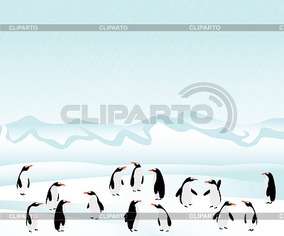 Penguins on ice | Stock Vector Graphics |ID 3341906