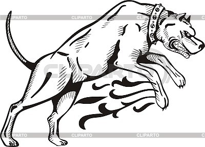 Tattoo dog with collar | Stock Vector Graphics |ID 3006415