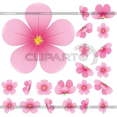Цветки сакуры | Векторный клипарт |ID 3010861