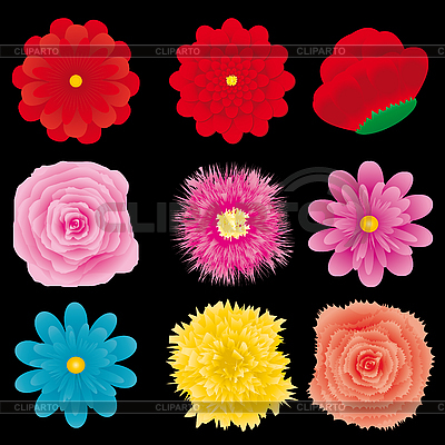 Blumen-Dingbats | Stock Vektorgrafik |ID 3011551