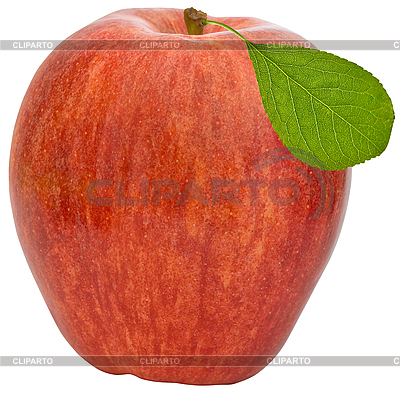 Red apple | High resolution stock photo |ID 3012747
