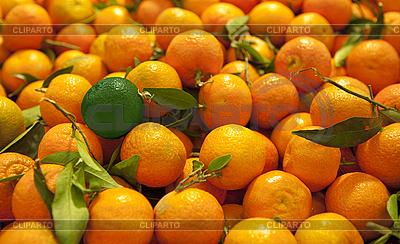 Reife Mandarinen mit grüner Mandarine | Foto mit hoher Auflösung |ID 3014035