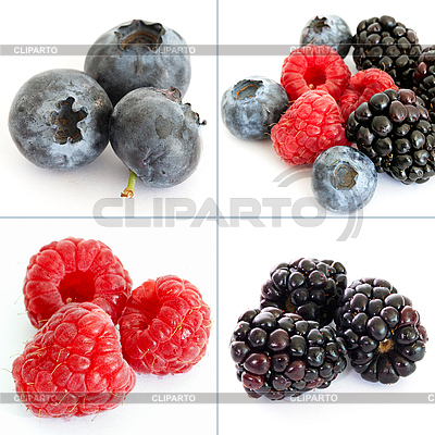 Berry collage | High resolution stock photo |ID 3015779
