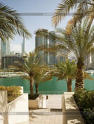 Town scape at summer. Dubai Marina. | High resolution stock photo |ID 3015797