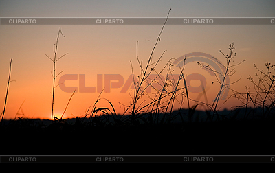 Landscape. Countryside before sunset | High resolution stock photo |ID 3018205