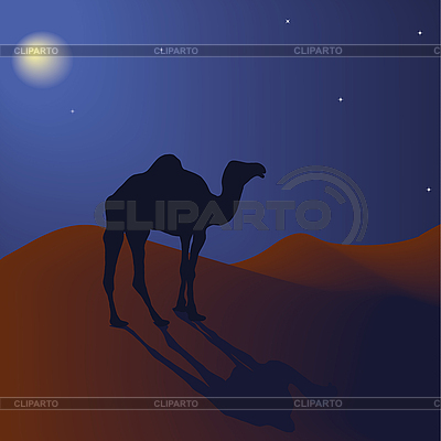Kamel in der Nacht | Illustration mit hoher Auflösung |ID 3018588