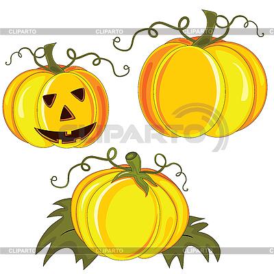 Halloween pumpkins | High resolution stock illustration |ID 3110641