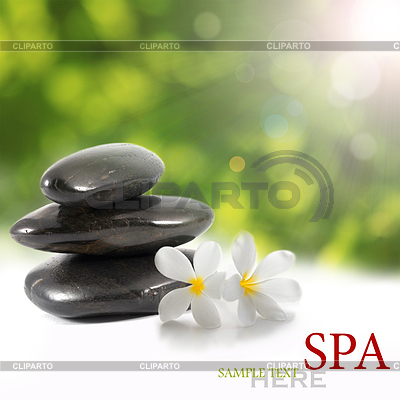 Spa background   High resolution stock photo  ID 3313355