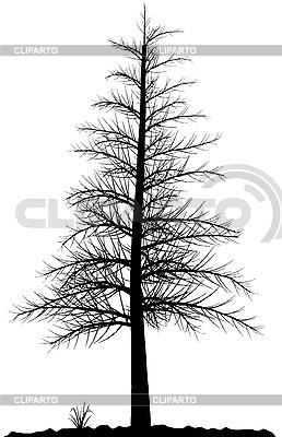 나무 실루엣 | 벡터 클립 아트 |ID 3013560
