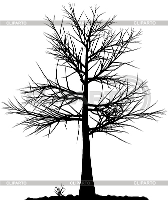 Tree silhouette | Stock Vector Graphics |ID 3013566