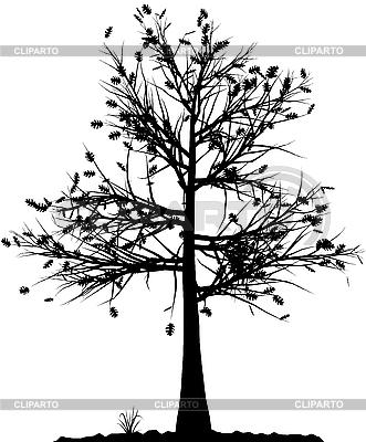 Tree silhouette   Stock Vector Graphics  ID 3013568