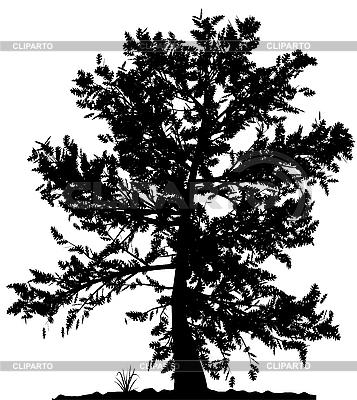 Drzewo sylwetka | Klipart wektorowy |ID 3013578