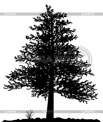 High detailed tree silhouette | Stock Vector Graphics |ID 3013586