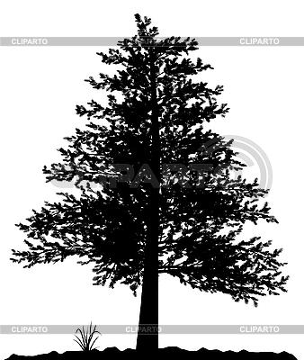 Wysokie szczegółowe drzewa sylwetka | Klipart wektorowy |ID 3013586