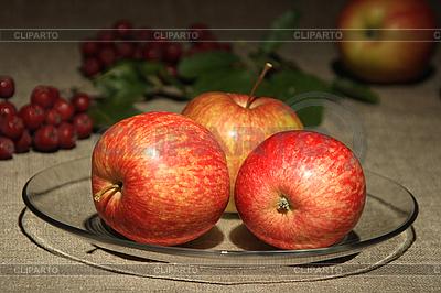 Jabłka na tekstyliów | Foto stockowe wysokiej rozdzielczości |ID 3032660