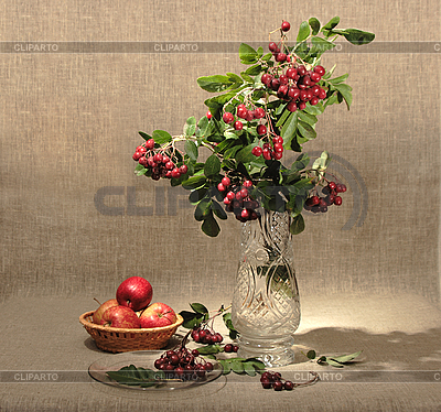 Bouquet of ashberry in glass vase and red apples | High resolution stock photo |ID 3032756
