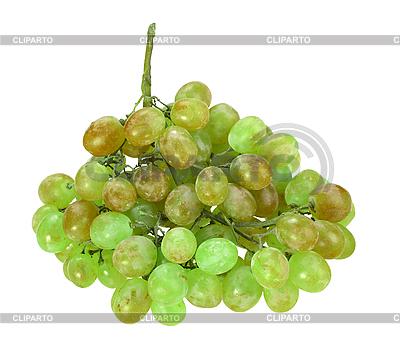 Pęczek zielonych winogron | Foto stockowe wysokiej rozdzielczości |ID 3032837
