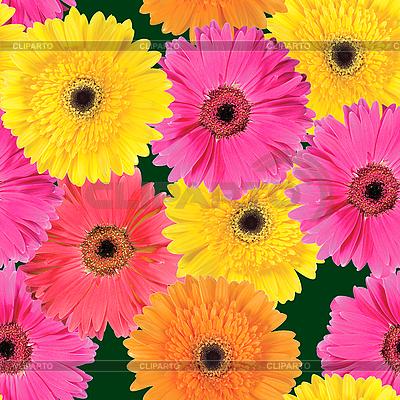 Tło różowe, pomarańczowe i żółte kwiaty | Foto stockowe wysokiej rozdzielczości |ID 3032860