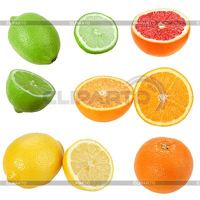 Zestaw owoców cytrusowych | Foto stockowe wysokiej rozdzielczości |ID 3032944