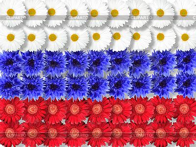 Фон из цветов в виде флага России | Фото большого размера |ID 3032947