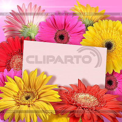 Frame on the background of flowers | High resolution stock photo |ID 3032997