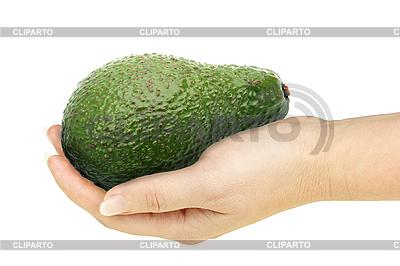 Avocado w ręku | Foto stockowe wysokiej rozdzielczości |ID 3033011