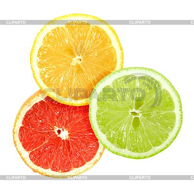 Set von Zitrusfrüchte | Foto mit hoher Auflösung |ID 3033016