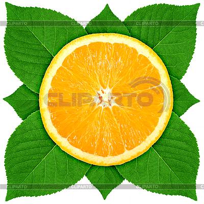 Orange mit grünen Blättern | Foto mit hoher Auflösung |ID 3033070